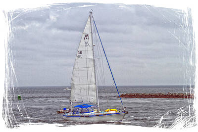 Sailing Art Print by Constantine Gregory