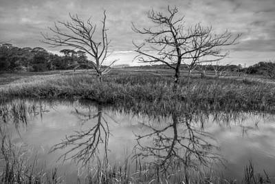 Salty Marsh At Jekyll Island In Black And White Art Print
