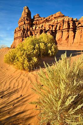 Photograph - San Rafael Desert by Ray Mathis