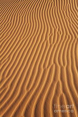 Sahara Photograph - Sand Dune In The Sahara Desert by Robert Preston