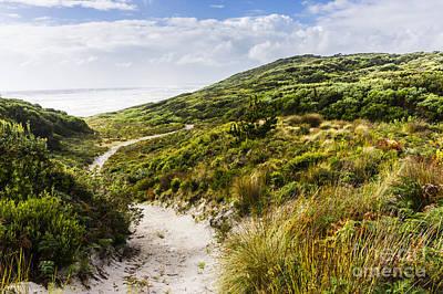 Sand Dune Path Leading To Tasmania Beach Landscape Art Print by Jorgo Photography - Wall Art Gallery