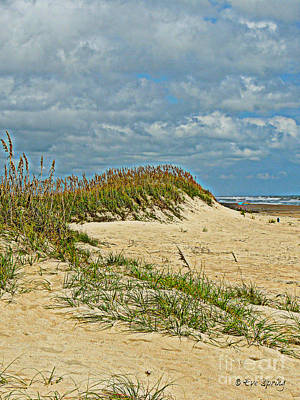 Photograph - Sand Dunes by Eve Spring