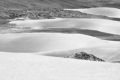Photograph - Sand Dunes by Hitendra SINKAR