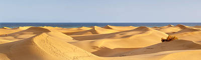 Sahara Photograph - Sand Dunes In A Desert, Maspalomas by Panoramic Images
