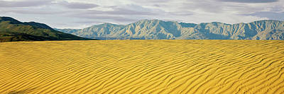 Santa Rosa Photograph - Sand Dunes In A Desert With A Mountain by Panoramic Images
