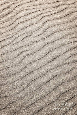 Seashore Photograph - Sand Ripples Abstract by Elena Elisseeva