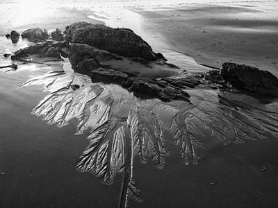 Photograph - Sand Traces by Pamela Hodgdon