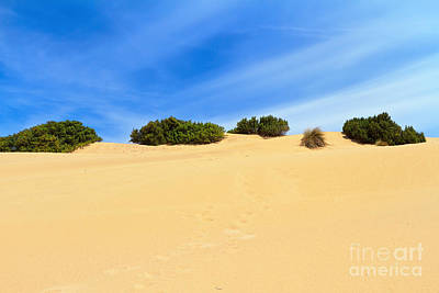 Piscina Photograph - Sardegna - Dune In Piscinas by Antonio Scarpi