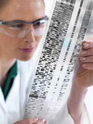 Technician Photograph - Scientist With Dna Results by Tek Image