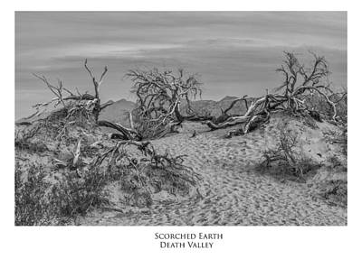 Photograph - Scorched Earth by Frederick H Claflin