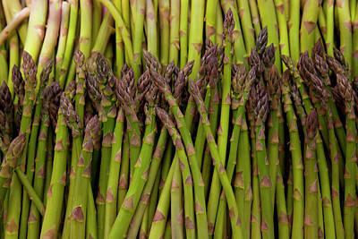 Asparagus Photograph - Scotts Asparagus Farm, Marlborough by Douglas Peebles