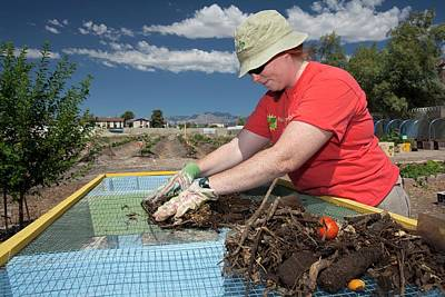 Tonopah Photograph - Screening Compost For Gardening by Jim West