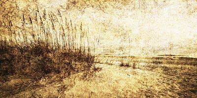 Sea Oats 4 Art Print by Skip Nall