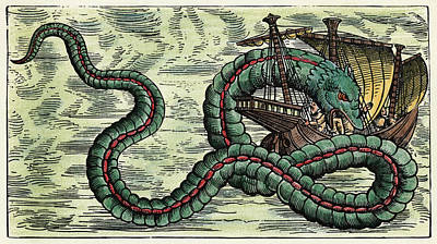 Painting - Sea Serpent, 1555 by Granger