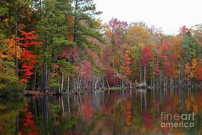 Autumn Photograph - Seasonal Color by Scott Cameron