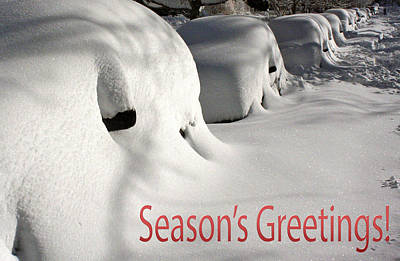 Photograph - Season's Greetings by Stuart Litoff