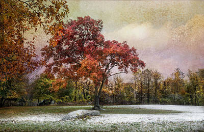 Photograph - Seasons Mingling by Robin-Lee Vieira