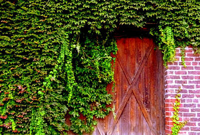 Photograph - Secret Door by Jeff Lowe