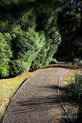 Secret Garden Path Art Print by Jorgo Photography - Wall Art Gallery