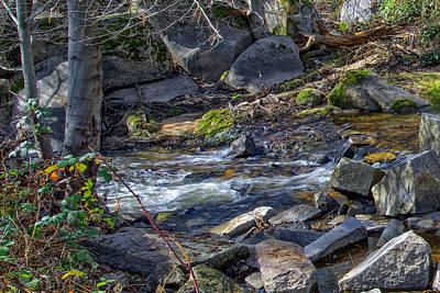 Photograph - Secret Ravine Scenic Shot by Jim Thompson