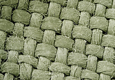 Linen Wall Art - Photograph - Sem Of Linen Weave by Dr Jeremy Burgess/science Photo Library.