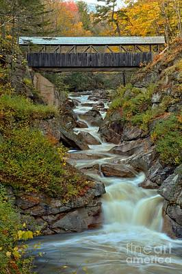 Photograph - Sentinel Pine Bridge Over Liberty Gorge by Adam Jewell