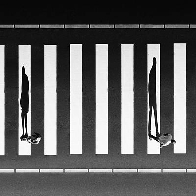 Crosswalk Photograph - Separation by Milad Safabakhsh