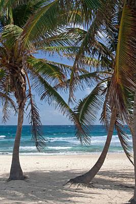 Photograph - Serene Caribbean Beach  by Sven Brogren