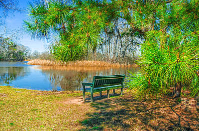 Photograph - Serenity Bench 2 by Ed Roberts