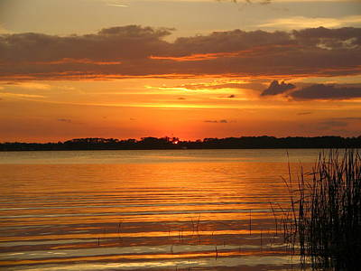 Setting Sun In Mount Dora Art Print