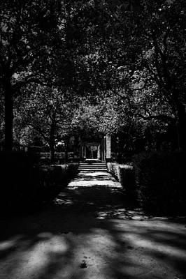 Nature Photograph - Seville - Park Maria Luisa by Andrea Mazzocchetti