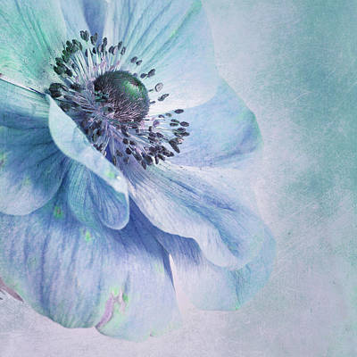 Painterly Photograph - Shades Of Blue by Priska Wettstein