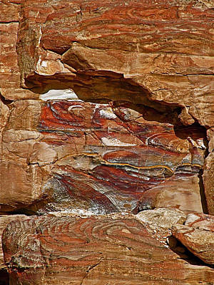 Shelf Fungi Rock In Petra-jordan  Original by Ruth Hager