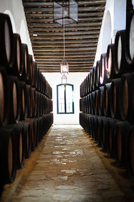 Wine Cellar Photograph - Sherry Casks In A Winery, Gonzalez by Panoramic Images