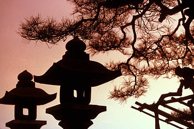Clouds Rights Managed Images - Shinto Shrine in Tokyo Royalty-Free Image by Carl Purcell