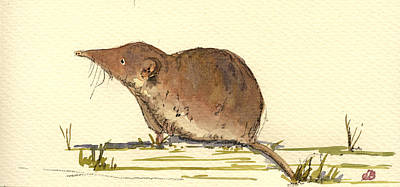 Mouse Painting - Shrew by Juan  Bosco