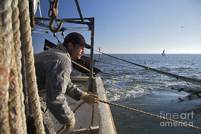 Photograph - Shrimp Fishing by Jim West