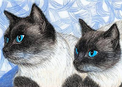 Drawing - Siamese Cats by Jo Prevost