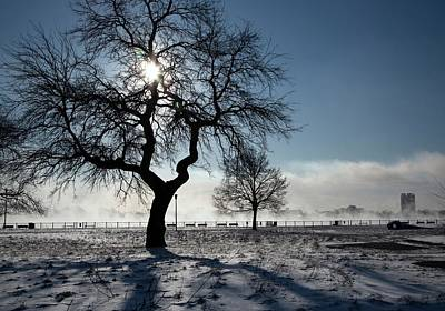 River Mist Photograph - Silhouetted Tree In Winter by Jim West