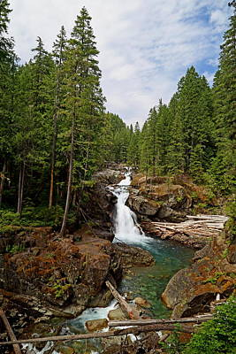 Photograph - Silver Falls by Angie Vogel
