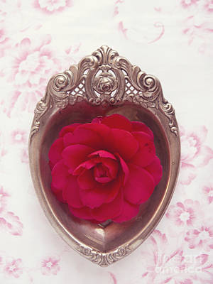 Photograph - Silver Heart - Red Camellia by Cindy Garber Iverson