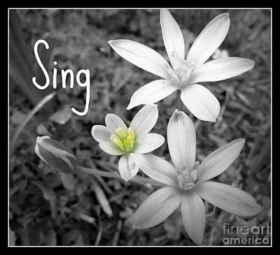 Photograph - Sing by Nancy Dole McGuigan