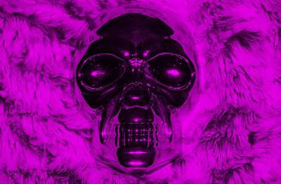 Mixed Media - Skull In Purple by Rob Hans