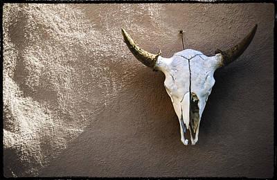 Cow Skull Photograph - Skull by Kelley King