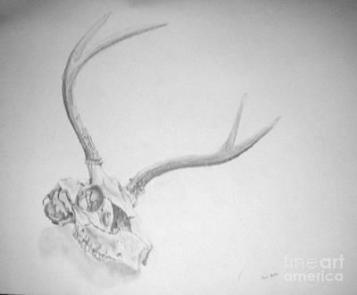 Skull Art Print by Tamir Barkan