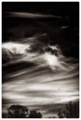 Photograph - Sky Wisps Planes And Trees by Lenny Carter