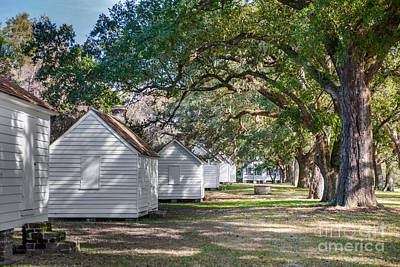 Photograph - Slave Cabins by Dale Powell