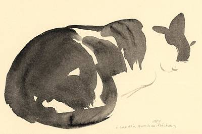 Sleeping Cat Art Print by Claudia Hutchins-Puechavy