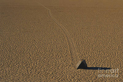 Dry Lake Photograph - Sliding Rock On Racetrack Playa by George Ranalli