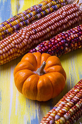 Thanksgiving Art Photograph - Small Pumpkin And Indian Corn by Garry Gay
